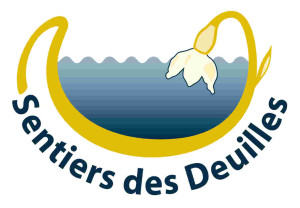 Logo modifié